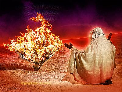Fire Baptized Harvesters!!